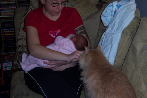 Breastfeeding Bliss… or not… well, not yet.