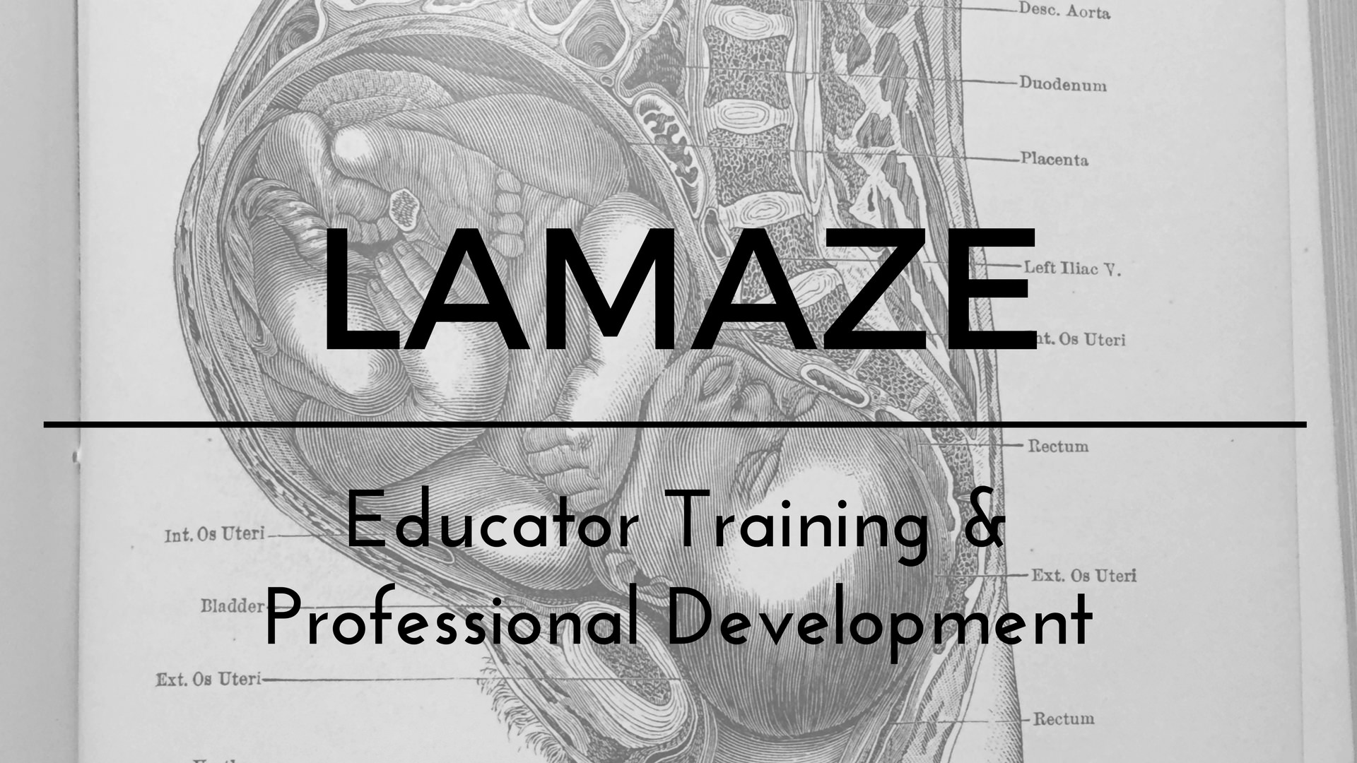 Lamaze Certified Childbirth Educator Training Shining Light